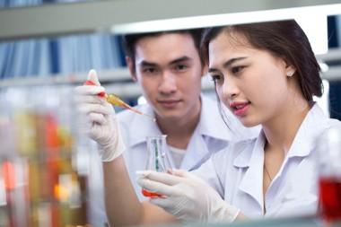 Quy định của Bộ Y Tế về việc quản lý, kiểm tra chất lượng thuốc